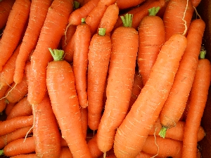 organic sweet carrots from Ripley Farm, Maine
