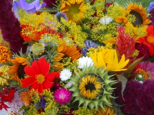 mixed bouquets in August