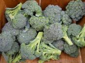Broccoli flowerets from Ripley Farm, Maine